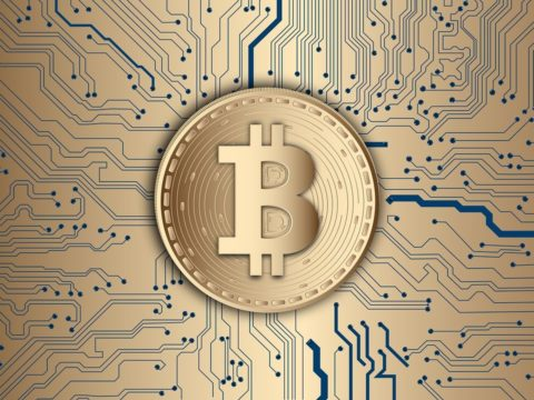 Bitcoin Buzz: Bitcoin Will Go Further Up And Never Go Down From $11K